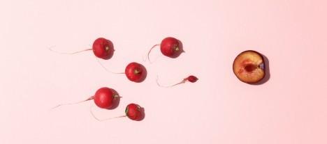 Spermosens IPO får teckna-rekommendation av analytiker
